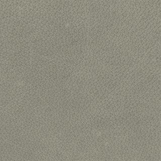 Arizona 1563 - steingrau