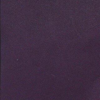 Vari 6476 - aubergine