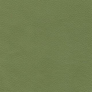 Napoli Colore 2350 - linde