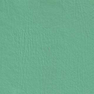 Ocean FR mint