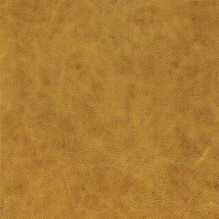 8495 - giallo