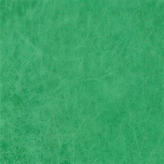 7813 - verde