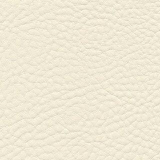 4041 - ivory