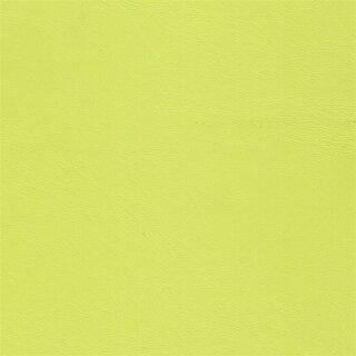 9518 kiwi