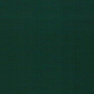 97888 flaschengrün