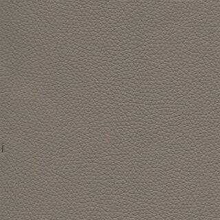 1881 - steingrau