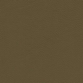 7612 - kiwi
