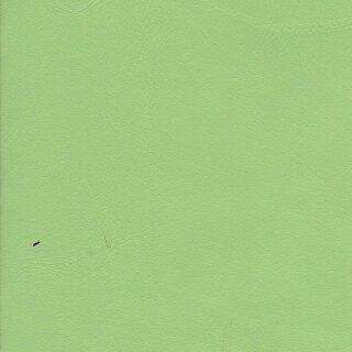 7893 - pistazie