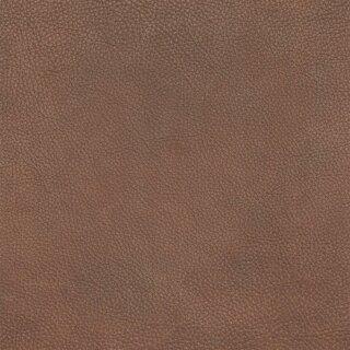 2538 - terra