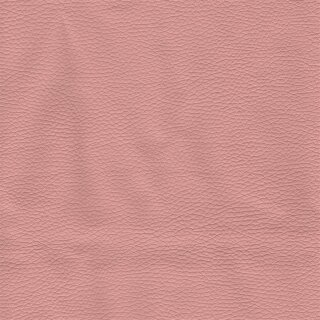 4400 - rosa 2009