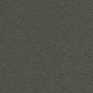 1516 - gris