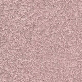 4913 - rosa