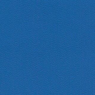 9259 - blue amon